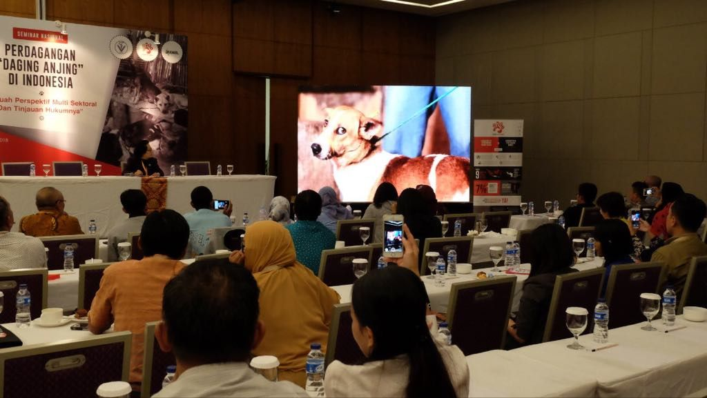 Pushing Forward with Indonesia's Pledge to End Cruel Dog and Cat