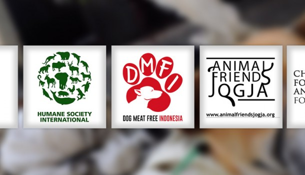 Four Animal Protection Charities Join Forces to Create the Dog Meat-Free Indonesia (DMFI) Coalition