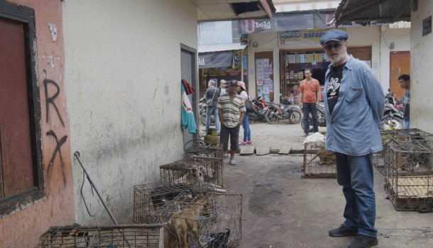 "British actor and DMFI Ambassador Peter Egan visits ""sickening horrors"" of North Sulawesi's brutal dog and cat meat markets, calls on Indonesian government to take action"